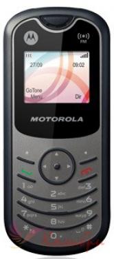 Motorola WX160 - основное фото