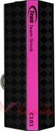 TEAM 32 GB C101
